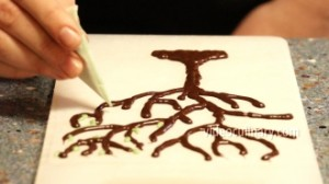 chocolate-tree_3