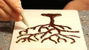 chocolate-tree_3