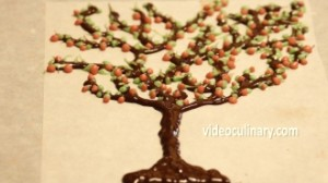 chocolate-tree_5